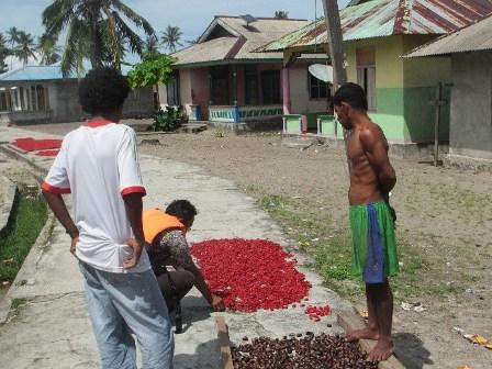 Kisah singkat tentang Nusaulan, kampung di ujung barat Kaimana Papua Barat